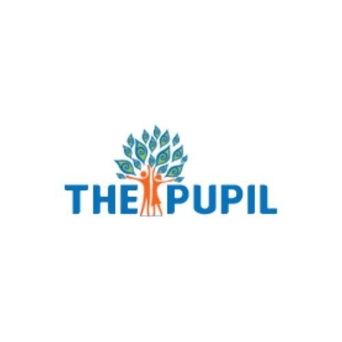Our Client-the pupil school